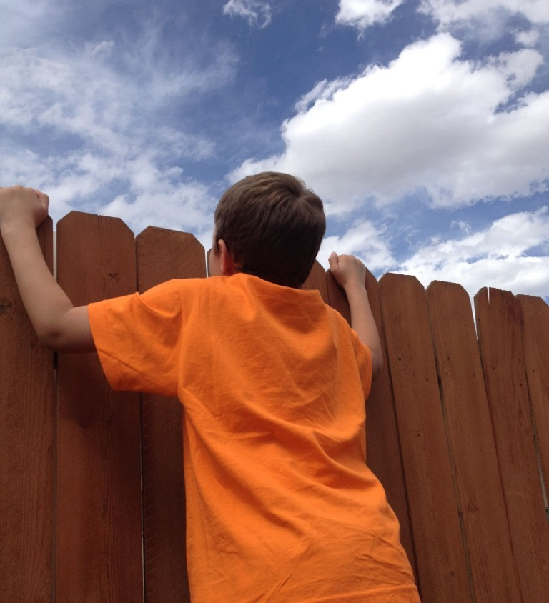 looking over fence