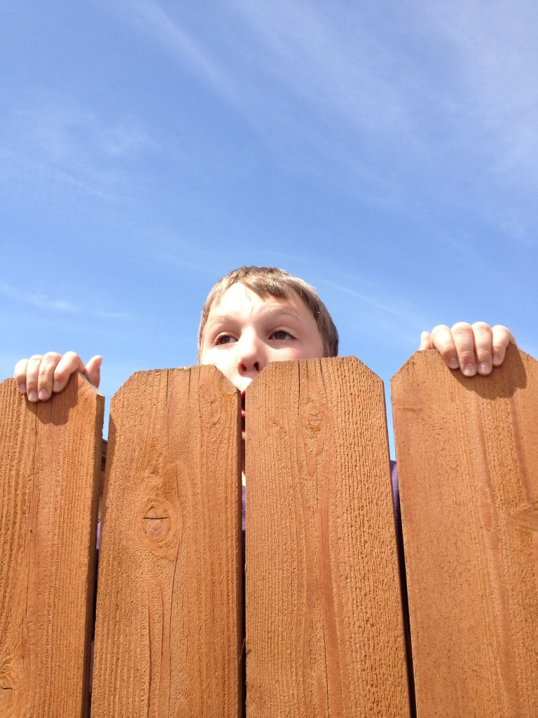 peering over fence